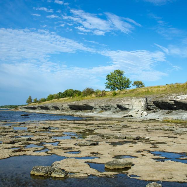 """""""Eroded limestone coast"""" stock image"""
