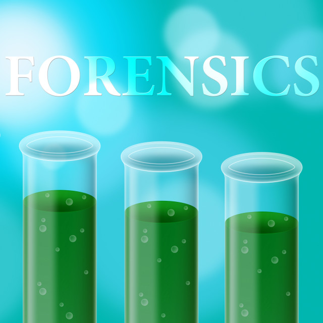 forensic hair experiment Essential understanding 7: physical evidence—fibre, stain, and hair analysis 89 activity 7a: fibre and stain analysis 91 forensic sciences:.