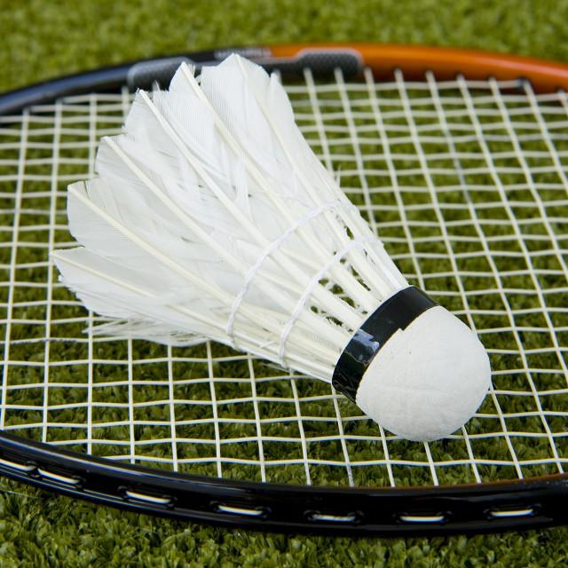 """Badminton Racket And Shuttlecock"" stock image"