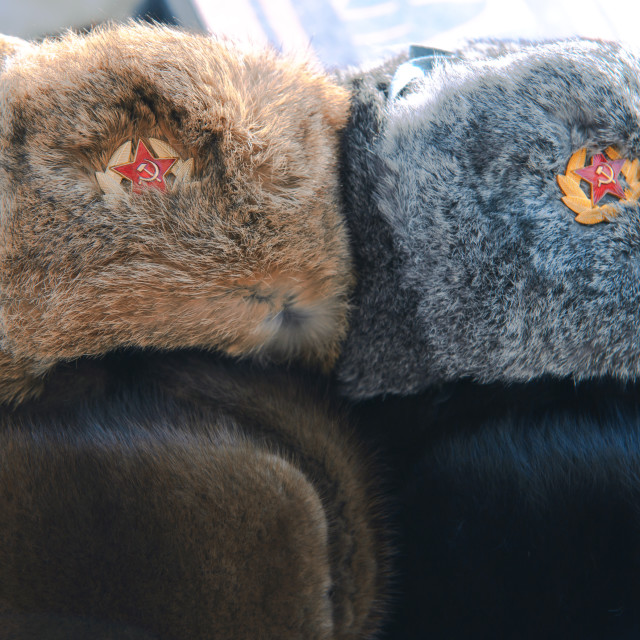 """""""Russian winter fur hats in a row"""" stock image"""