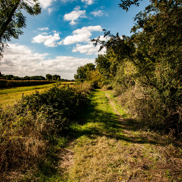 """Fenland track"" stock image"