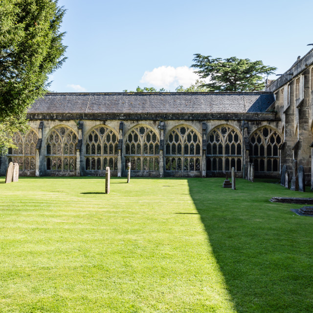 """""""Cloister and churchyard in Wells"""" stock image"""