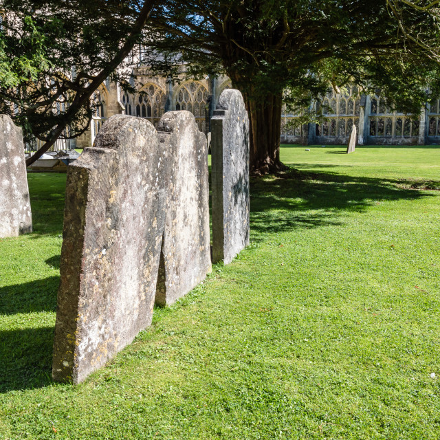 """""""Green churchyard with tombs"""" stock image"""
