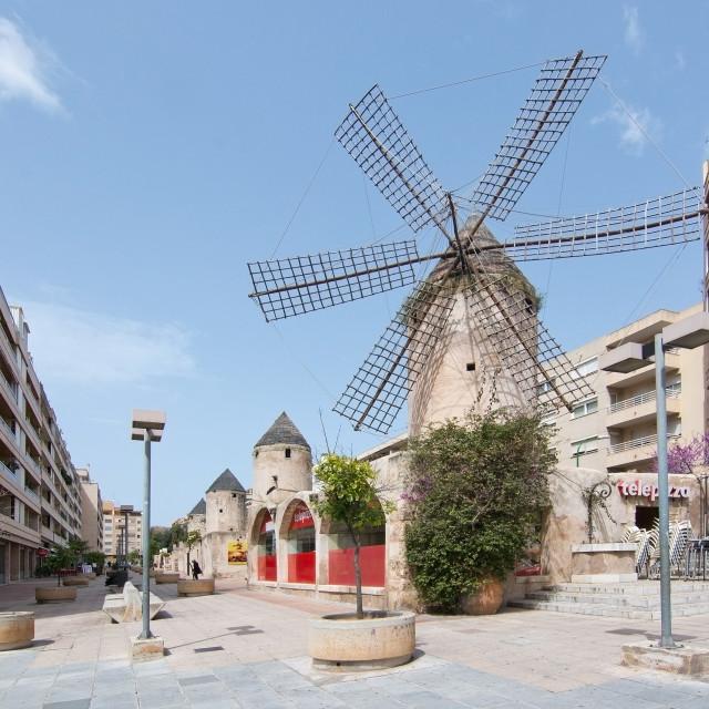 """""""Windmill in the area Quattro Molinos"""" stock image"""