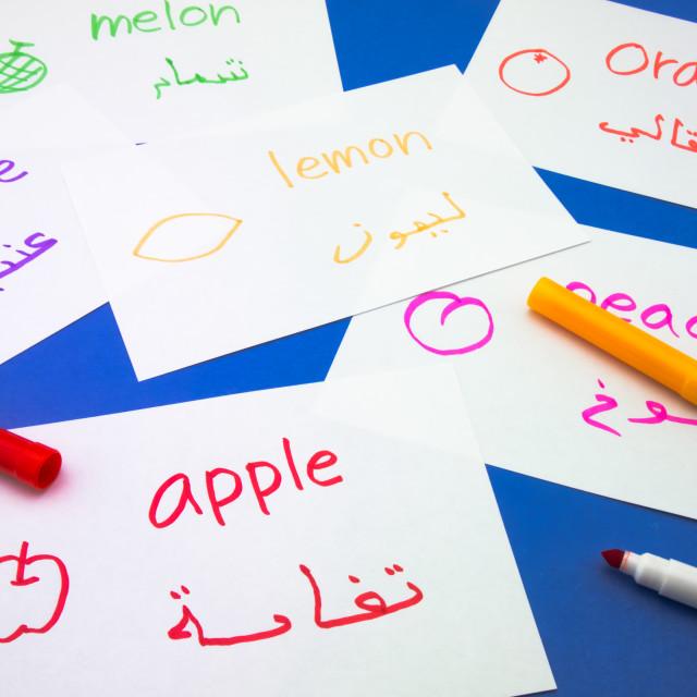 """Making Language Flash Cards; Arabic"" stock image"