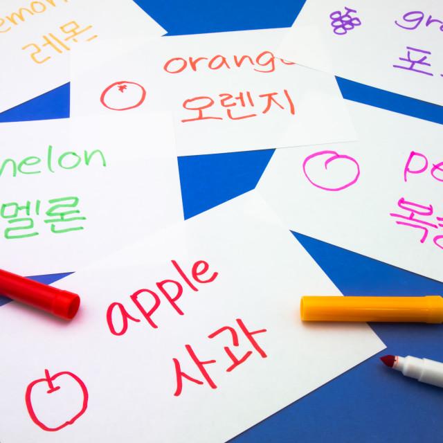 """""""Making Language Flash Cards; Korean"""" stock image"""