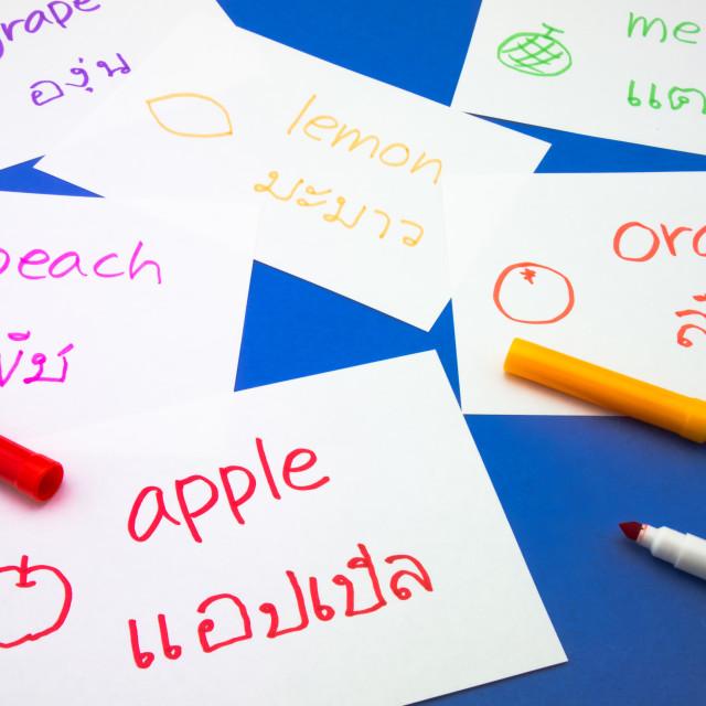 """""""Making Language Flash Cards; Thai"""" stock image"""