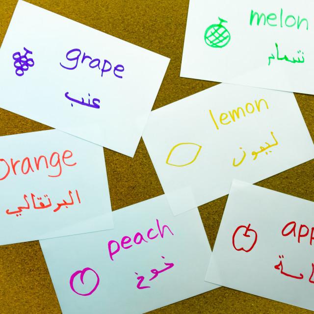 """Language Flash Cards; Arabic"" stock image"
