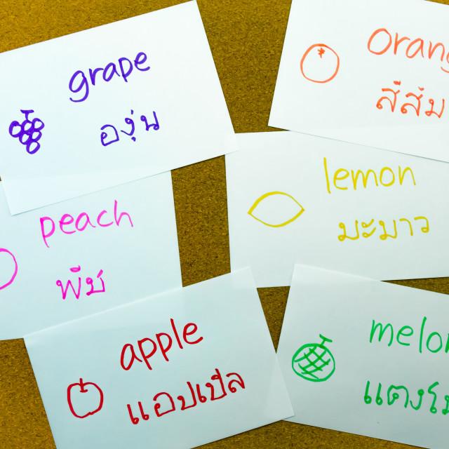 """Language Flash Cards; Thai"" stock image"