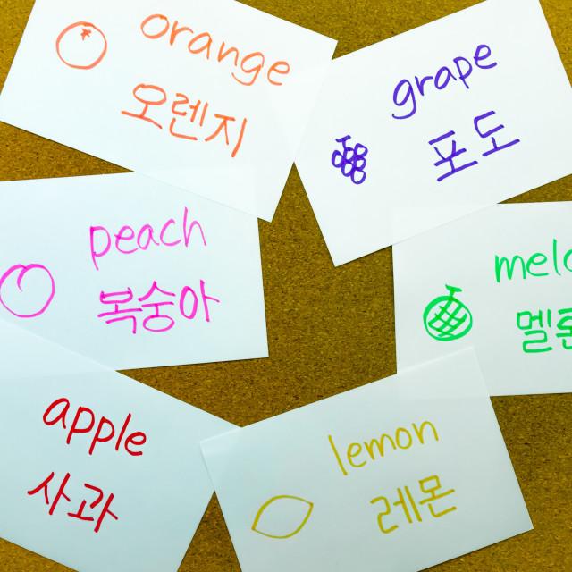 """""""Language Flash Cards; Korean"""" stock image"""