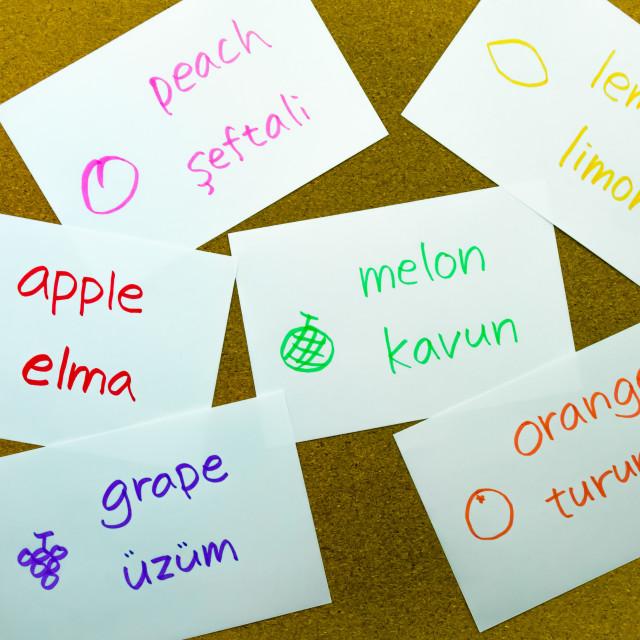 """Language Flash Cards; Turkish"" stock image"