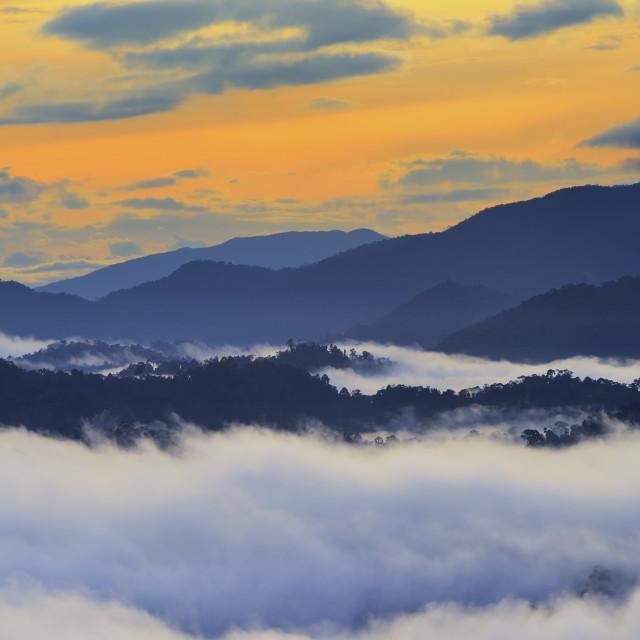 """Sunrise over rain forest in Danum Valley Conservation Area in Lahad Datu, Sabah Borneo, Malaysia."" stock image"