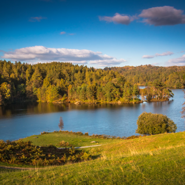 """Tarn Hows in the Lake District National Park"" stock image"