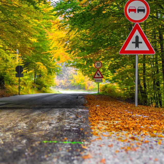 """Fall on its way"" stock image"