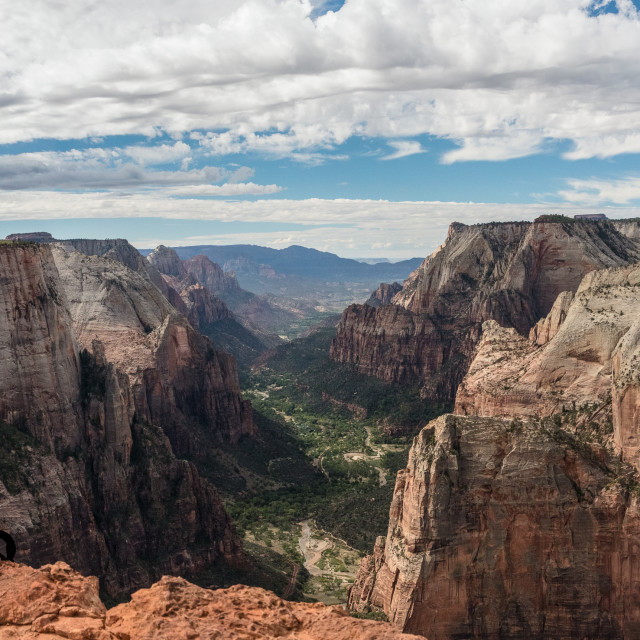 """""""Observation Point Zion Canyon"""" stock image"""