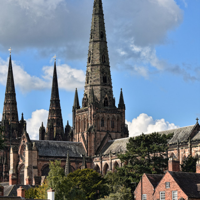 """Lichfield Cathedral"" stock image"
