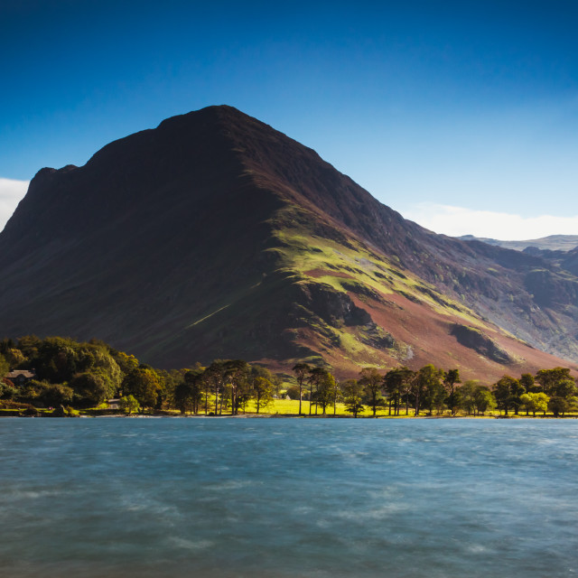 """Buttermere Pines and Fleetwith Pike, Buttermere"" stock image"
