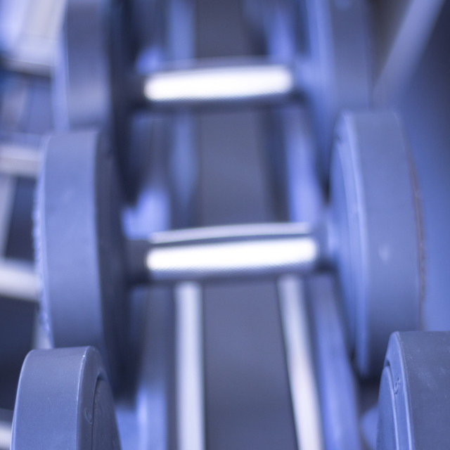 """""""Gym exercise dumbell free weights"""" stock image"""