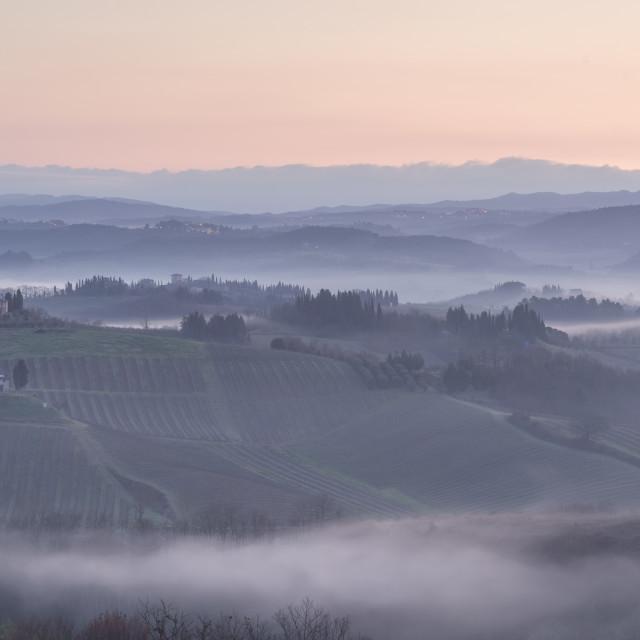 """Misty morning"" stock image"