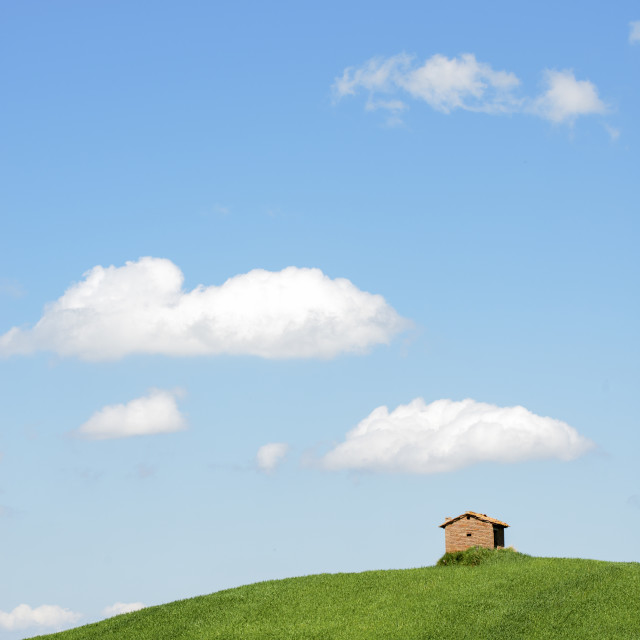 """""""A typical country landscape in spring time"""" stock image"""
