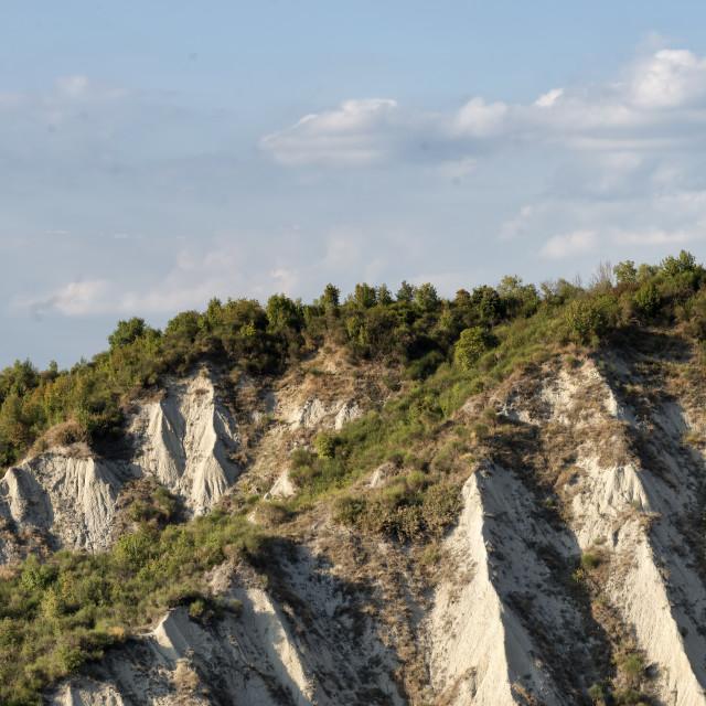 """""""I Calacnhi (Tuscany)"""" stock image"""
