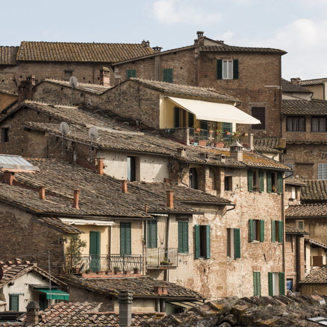 """""""The roofs of Siena"""" stock image"""