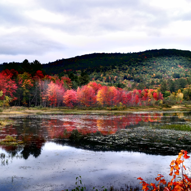 """Fall in New Hampshire"" stock image"