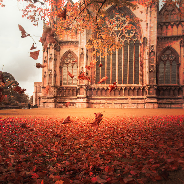 """Leaves falling, Lincoln Cathedral"" stock image"