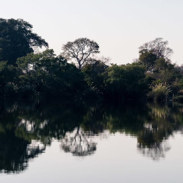 """Zambezi Rorschach V"" stock image"
