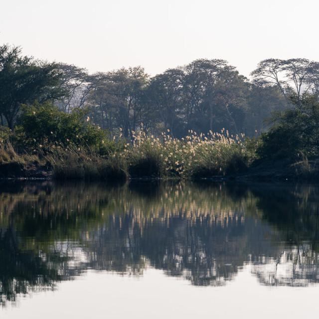 """""""Zambezi Rorschach VI"""" stock image"""