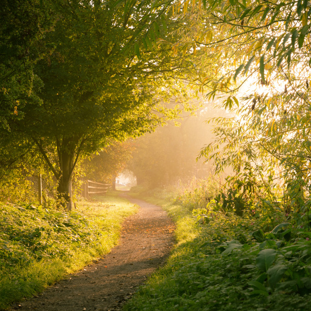 """""""Light At The End Of The Tunnel"""" stock image"""