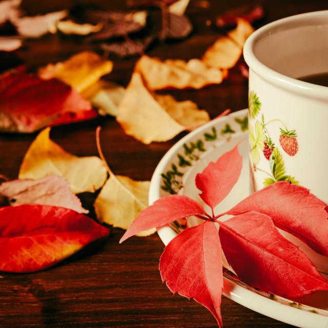 """""""Closeup of a cup of tea"""" stock image"""