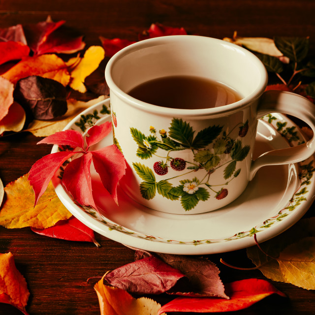 """""""Cup of tea and autumnal foliage"""" stock image"""