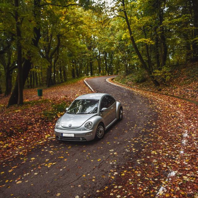 """""""Volkswagen Beetle"""" stock image"""