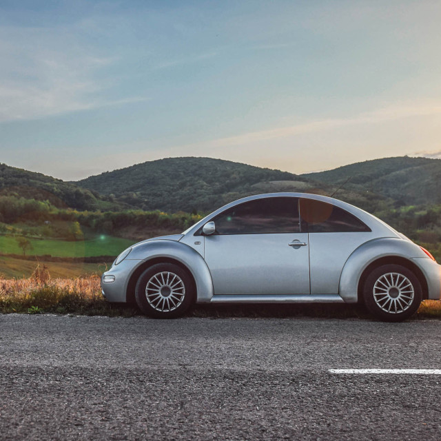 """""""Beetle and sunset"""" stock image"""