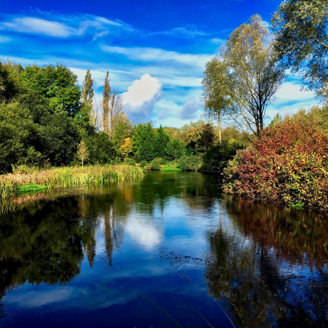 """""""Autumn by the river Kennet"""" stock image"""