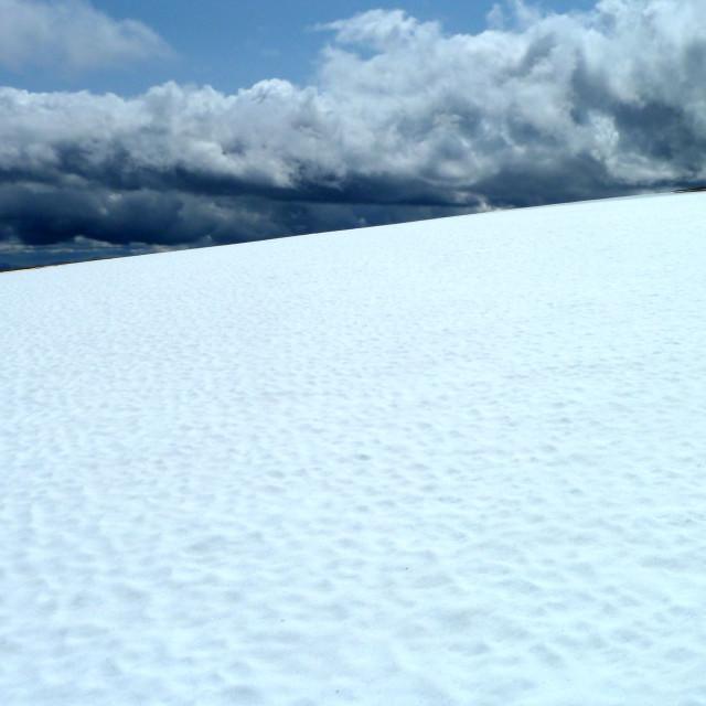 """""""Spring Snow"""" stock image"""