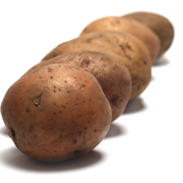 """Row of organic raw potatoes"" stock image"