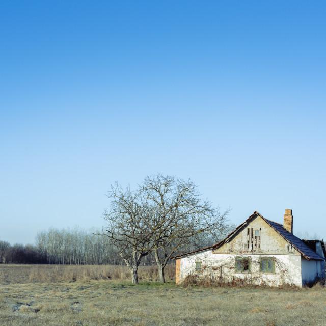 """""""Hungarian rural scene"""" stock image"""