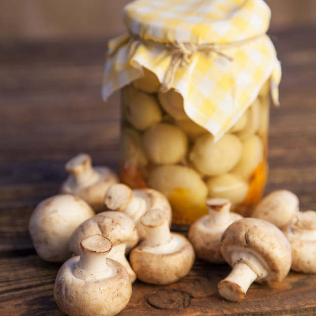 """""""Canned and fresh mushrooms"""" stock image"""