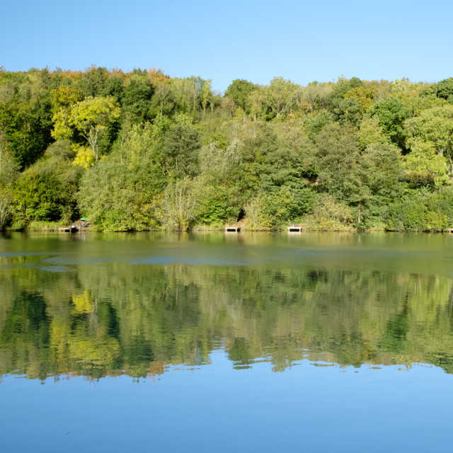 """Reflected trees on a lake"" stock image"