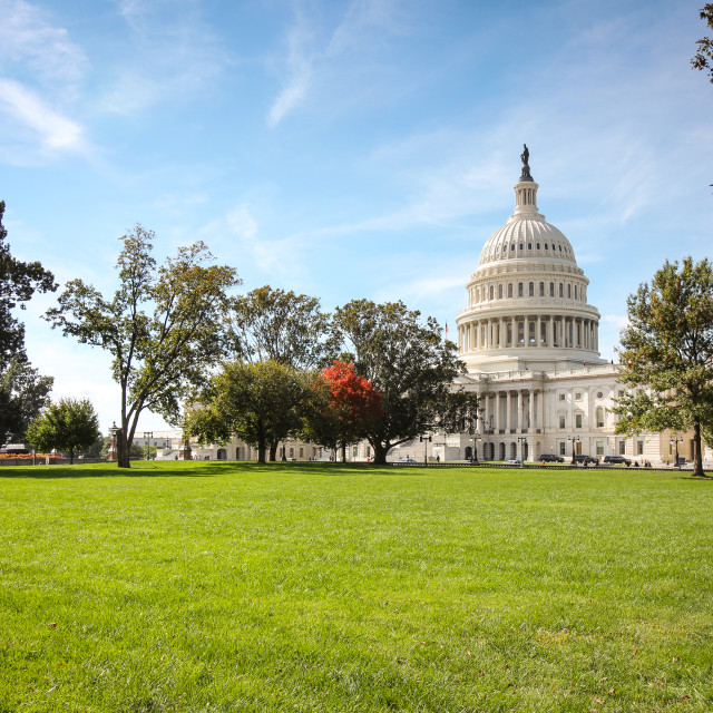 """""""Capitol Hill in Washington DC"""" stock image"""