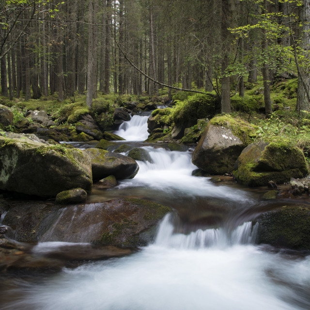 """River in the Dolomites"" stock image"