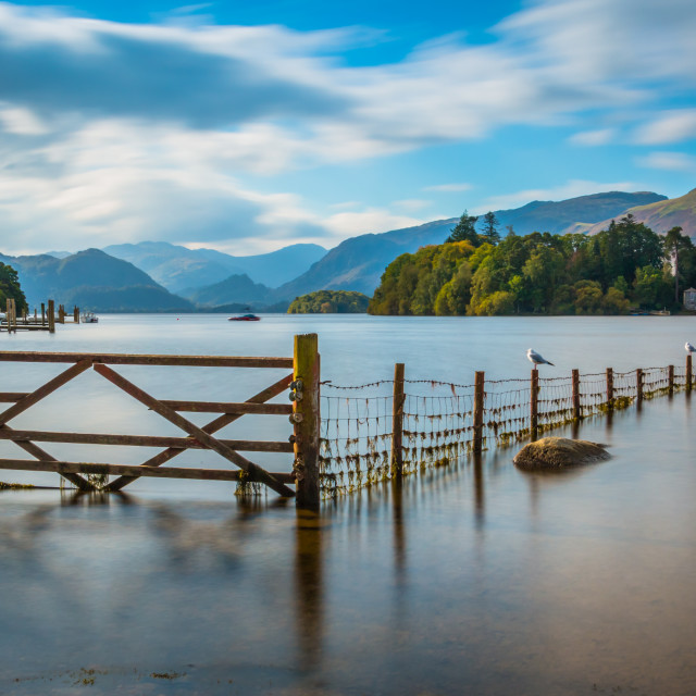 """The Derwent Water Fence"" stock image"