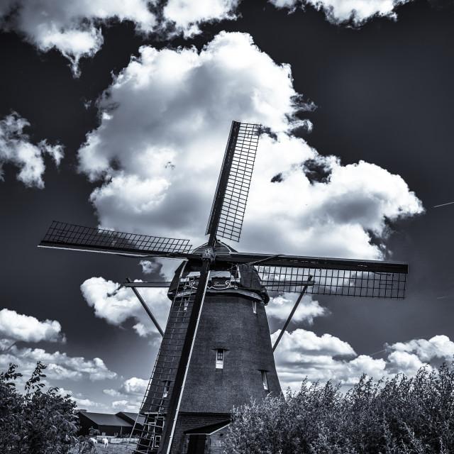 """Monchrome windmill, Amsterdam"" stock image"