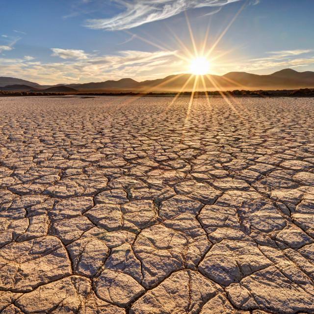 """""""Mojave Desert Sunrise"""" stock image"""
