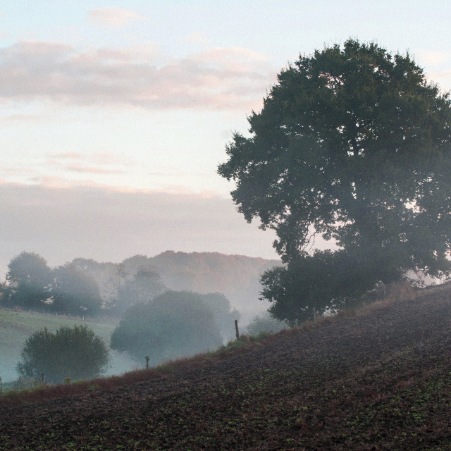 """Mayenne countryside, France"" stock image"