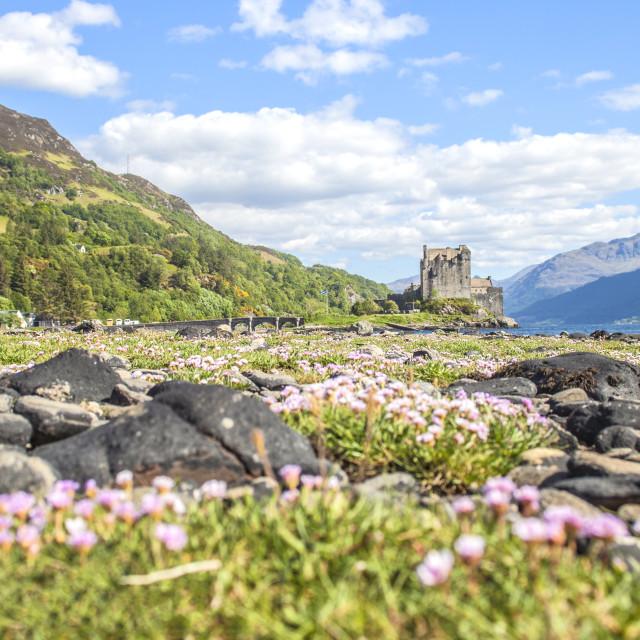 """""""Scottish castle."""" stock image"""