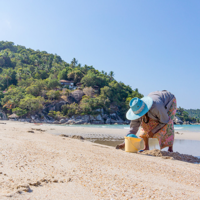 """""""Thai woman digs up mussels on the beach"""" stock image"""