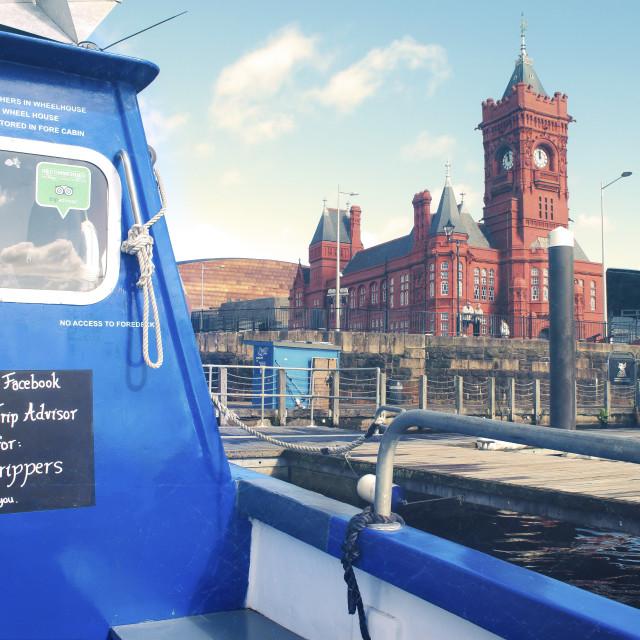 """Cardiff Bay"" stock image"